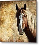 Wild Horse Fade Metal Print