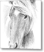 Wild Horse Pencil Portrait Metal Print