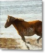 Wild Horse Running Through Water Metal Print
