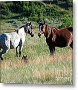Wild Horses In Medora Metal Print