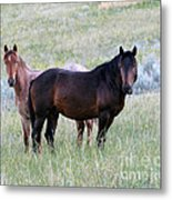 Wild Horses In The Badlands Metal Print