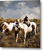 Wild Horses Mother And Child Metal Print