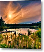 Wild Maine Woods In Baxter State Park Metal Print