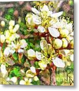 Wild Plum Flower Metal Print