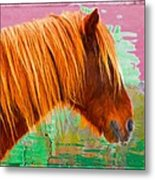 Wild Pony Abstract Metal Print