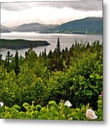 Wild Roses At Photographer's Point Overlooking Bonne Bay In Gros Morne Np-nl Metal Print