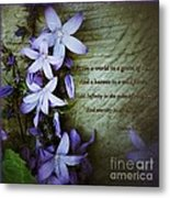 Wild Star Flowers And Innocence  Metal Print