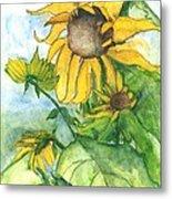 Wild Sunflowers Metal Print by Sherry Harradence