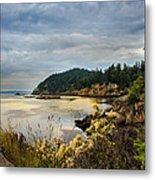 Wildcat Cove Metal Print by Robert Bales