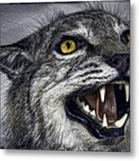 Wildcat Ferocity Metal Print by Daniel Hagerman