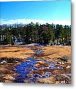 Wilderness Tree Line In Snow Metal Print