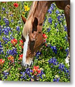 Wildflower Feast Metal Print