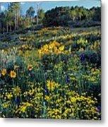 Wildflower Hillside Metal Print