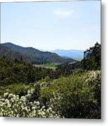Wildflower Mountain View Metal Print