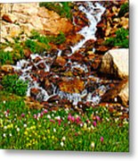 Wildflower Waterfall Metal Print