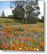 Wildflower Wonderland 3 Metal Print