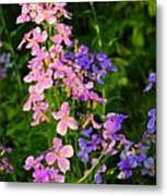 Wildflower Woods Metal Print