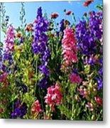 Wildflowers #14 Metal Print