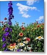 Wildflowers #7 Metal Print