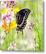 Wildflowers And Butterfly Metal Print