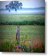 Wildflowers And Fog Metal Print