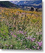 Wildflowers And Mountains  Metal Print