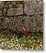 Wildflowers And Olympia Ruins   #9508 Metal Print