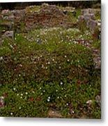 Wildflowers And Olympia Ruins   #9594 Metal Print