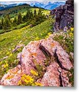 Wildflowers And Pink Rocks Metal Print