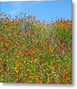 Wildflowers And Sky 2am-110541 Metal Print