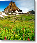 Wildflowers At Logan Pass Metal Print