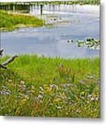 Wildflowers By Heron Pond In Grand Teton National Park-wyoming Metal Print