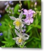 Wildflowers Greeting Card Metal Print