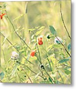 Wildflowers In Bloom Metal Print