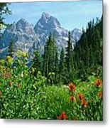 1m9372-v-wildflowers In Cascade Canyon, Tetons Metal Print