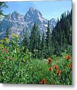 1m9371-h-wildflowers In Cascade Canyon, Tetons Metal Print