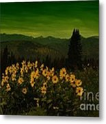 Wildflowers In The Beartooth Mountains Metal Print
