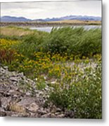 Wildflowers In The Wind Metal Print
