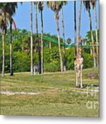 Wildlife And Wild Rides Metal Print