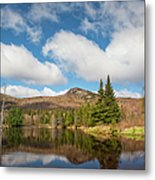 Wildlife Pond - Bethlehem New Hampshire Usa Metal Print