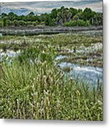 Wildlife Refuge Reflections Metal Print