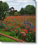 Wildseed Farms Metal Print