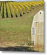 Willamette Valley Mcminnville Oregon Metal Print