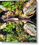 Williams River Reflections Metal Print by Thomas R Fletcher