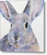 Willis Rabbit Metal Print