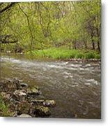 Willow River 3 Metal Print