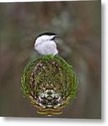 Willow Tits Planet Metal Print