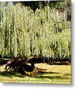 Willow Tree With Job Verse Metal Print