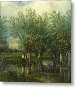 Willows With A Man Fishing Metal Print
