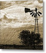 Wind Blown Metal Print